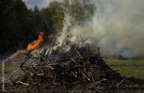 Plakat Niektóre duże drewniane ogniska z dużą ilością dymu i gorącym czerwonym światłem