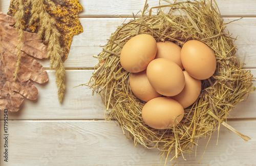 Plakat Zakończenie widok surowi kurczaków jajka.