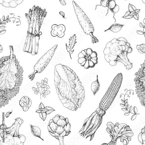 wzor-warzywa-szablon-projektu-menu-rynku-rolnikow-wzor-opakowania-zywnosci-ekologicznej-warzyw-reka-starodawny-szkic-ilustracji-wektorowych-grafika-liniowa-grawerowany-styl
