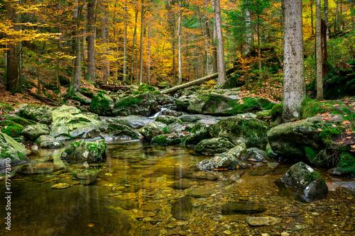 Zdjęcie XXL Rzeka przy pęknięć dziury siklawami w Bawarskim lesie w jesieni