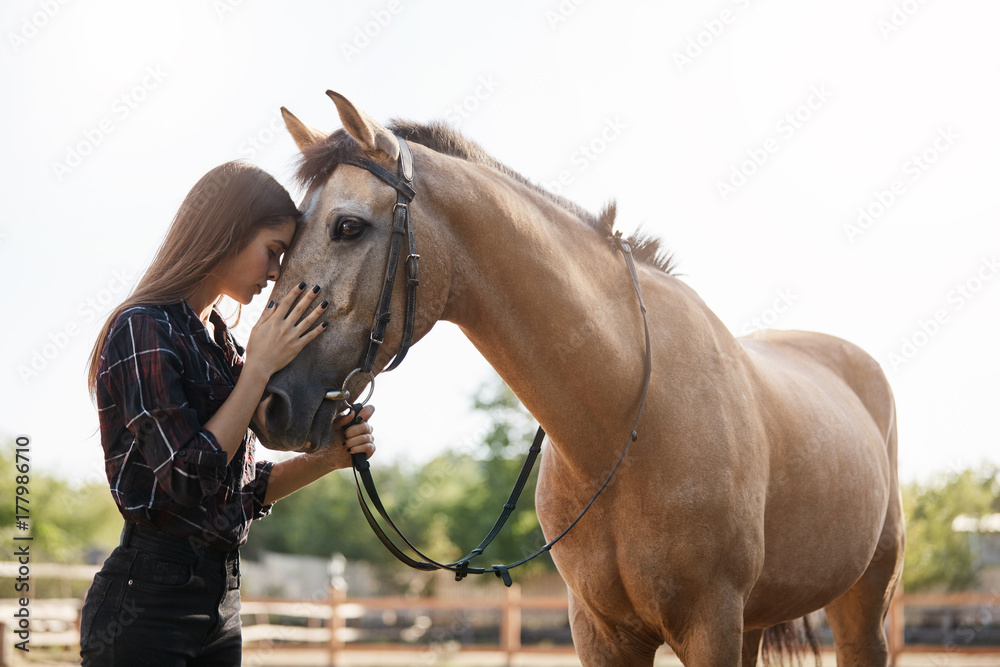 Fototapety, obrazy: Portrait of young female assistant farm manager calming down a horse and talking to a new stallion.