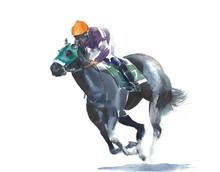Horse Racing Jockey Competitio...