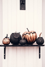Black And Rose Cold Colored Pumpkins Against White Wall. Minimalist Style. Copyspace