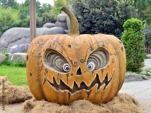 Fotografie, Obraz  una zucca per halloween