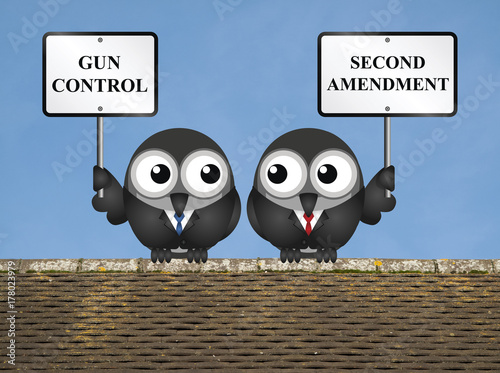 Photo  Gun control verses the USA second amendment and the right to keep and bear arms
