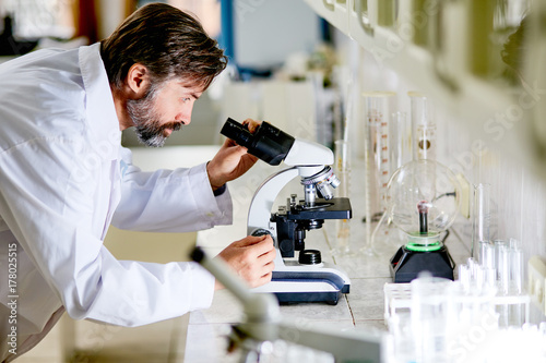 Fototapeta Mature scientist looking in microscope during chemical investigation in lab