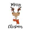 Cute deer hand drawn, christmas/ winter background