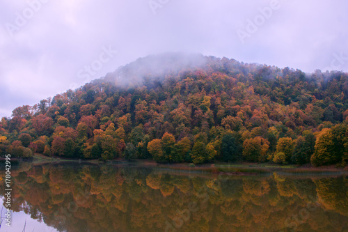 Fotobehang Purper Autumn landscape with colorful forest