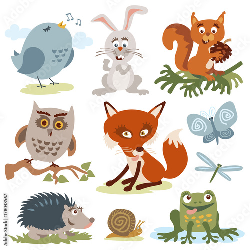 Poster de jardin Zoo Cute cartoon forest animals vector