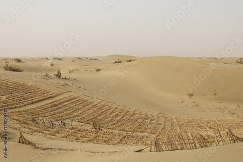 Plakat Taklamakan pustynia, porcelana