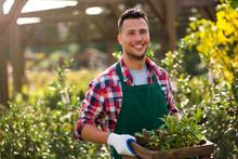 Man Working In Garden Center
