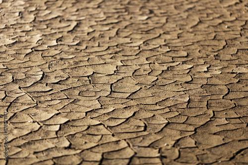 Zdjęcie XXL Pęknięcia w suszy dotknęły ziemię