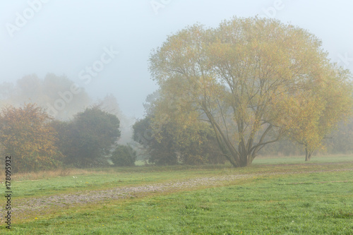 Photo  Misty morning in the Essex countryside