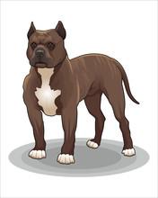 Cartoon Of Dog-vector Drawing-...