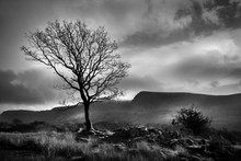 Cader Idris Mountain In Wales ...