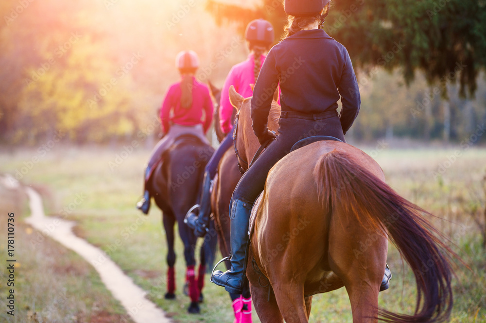 Fototapety, obrazy: Group of teenage girls riding horses in autumn park. Equestrian sport background with copy space