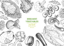 Vegetables Top View Frame. Farmers Market Menu Design Template. Organic Vegetables Food Poster. Vintage Hand Drawn Sketch Vector Illustration. Line Art Graphic. Engraved Style.