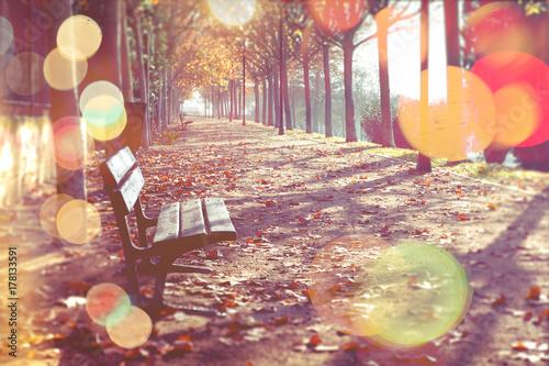 Plakat Streszczenie jesieni. Ławce w parku na spadek w pomarańczowy toned
