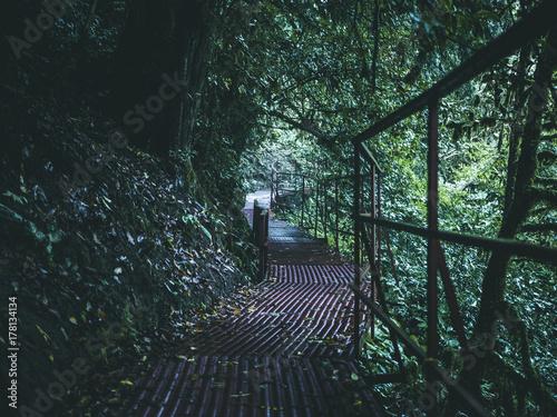 Zdjęcie XXL ścieżka górskiego kanionu