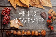 Hello November. Frame Of Autum...