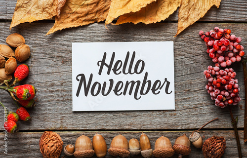 Obraz Hello november. frame of autumn decor Poster card with sunlight filter and toned grunge image  - fototapety do salonu
