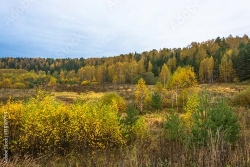 Zdjęcie XXL Piękny jesienny krajobraz.