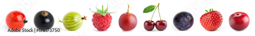 Poster Fruit Fruits