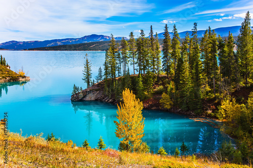 Abraham Lake in the Rockies Canvas Print
