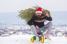 Happy Hipster Carrying Xmas Tr...