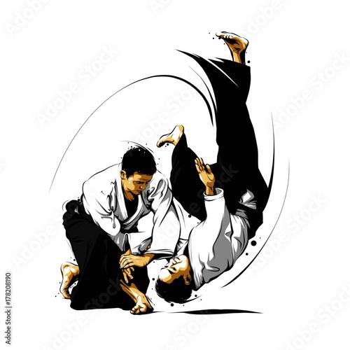 aikido action 1 Wallpaper Mural