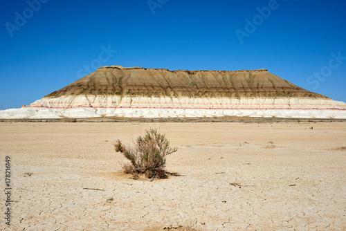 Fototapeta Na płaskowyżu Ustyurt. Pustynia i płaskowyż Ustyurt lub płaskowyż Ustyurt znajduje się na zachodzie Azji Środkowej, konkretnie w Kazachstanie, Turkmenistanie i Uzbekistanie.