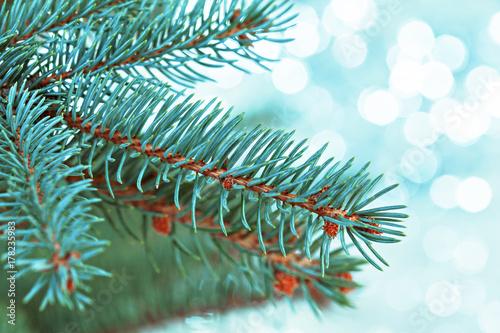 Fototapeta christmas tree light obraz na płótnie