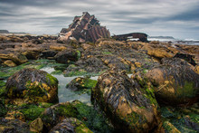 Wreckage Of An Old Cargo Ship Lies On Weed Covered Rocks.  Cape Point, South Africa