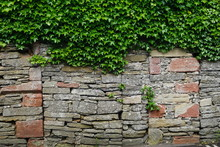 Weathered Stone Wall With Ivy ...