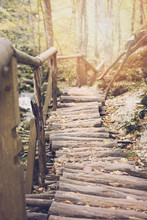 Wood Way Of Bridge In Fall Forest