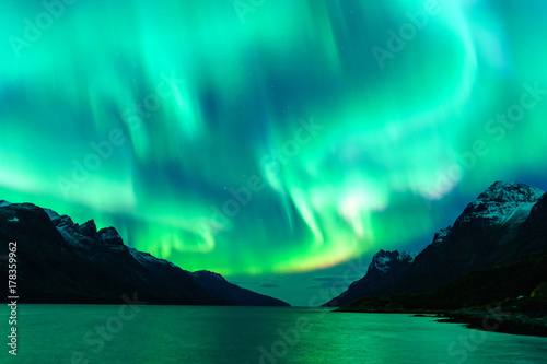Canvas Prints Green coral Northern lights in Tromsø, Norway