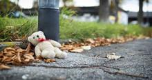 Teddy Bear Thrown Near The Pil...