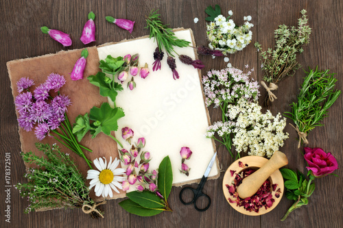 Herbal medicine preparation with herbs and flowers used in natural herbal medicine preparation with herbs and flowers used in natural alternative remedies with hemp paper notebook mightylinksfo