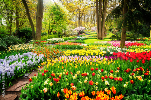 Spoed Foto op Canvas Groene Colourful Tulips Flowerbeds and Path in an Spring Formal Garden, retro toned