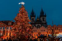 Christmas Tree - Prague - Cezch Republic