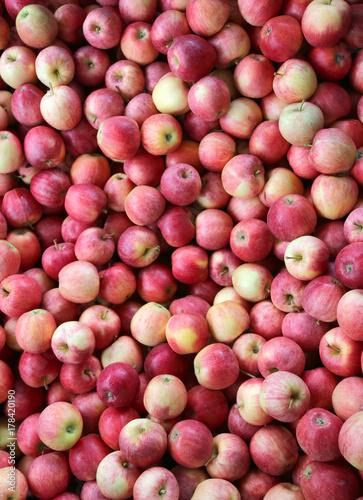Zdjęcie XXL czerwone jabłka gotowe do spożycia