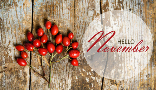 Hello November Wallpaper With Rose Hips Tree Composition On Rustic Wooden Background
