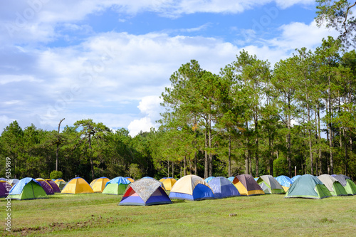 Poster Camping tents on green grass at camping site