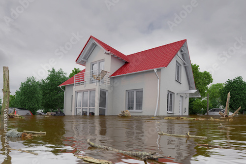 Fotografie, Obraz  3d render of a flooding white house - force of nature