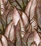 Tropikalny wzór banan liście w stylu vintage - 178454583