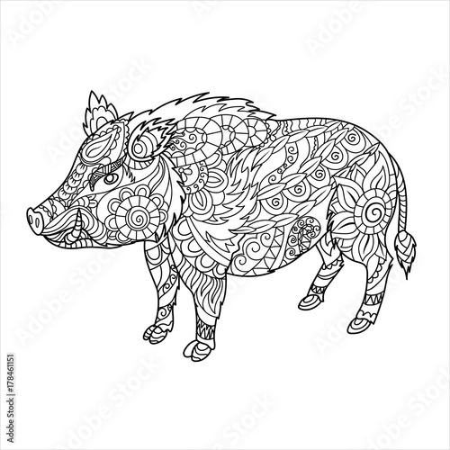 Wild Boar Coloring Book Forest Animal In Doodle Style Anti Stress For