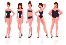 Set Of Female Body Shape Types...