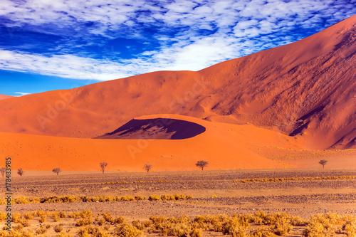 Zdjęcie XXL Pomarańczowo-czerwona wydma