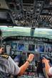Pilot Landing a Plane