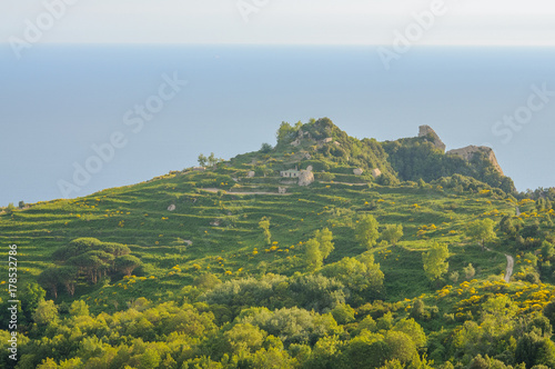 Fotomural  Aerial scenic view, Ischia Island, Italy